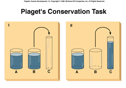 piaget s conservation tasks Piaget's water-level task: the impact of nationality and task difficulty on performance piaget's theory methods conservation 4 stages of development.